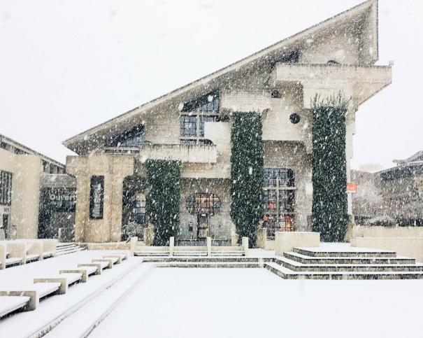 Livre et art sous la neige